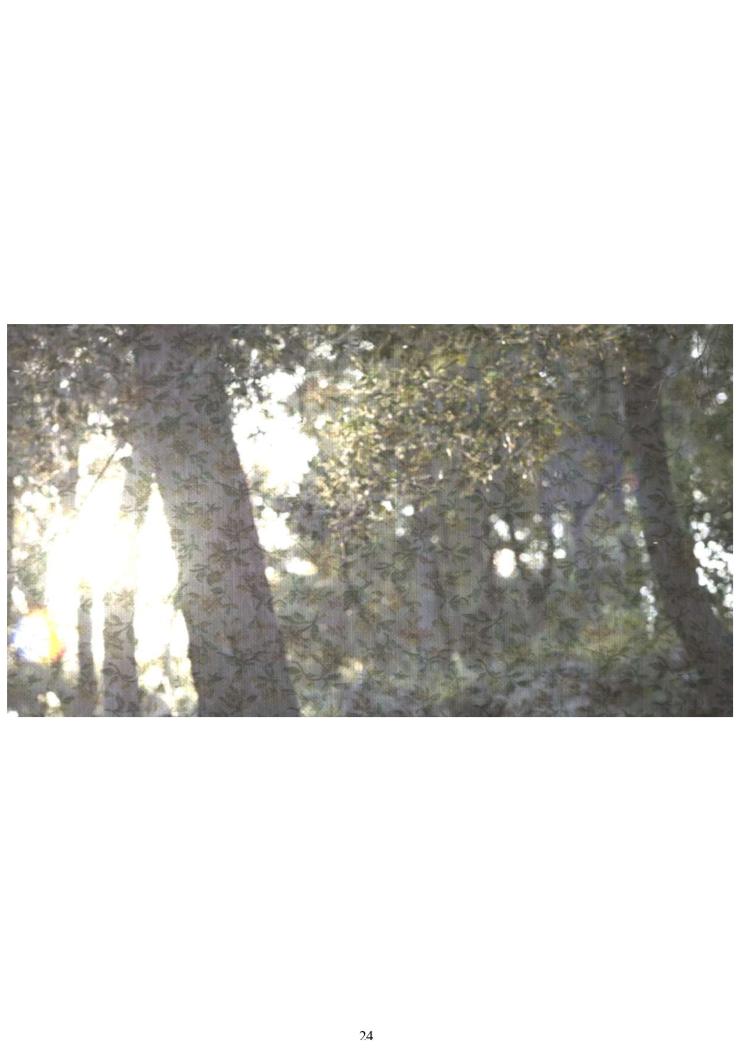 Capture d'écran 2020-01-21 à 16.47.58