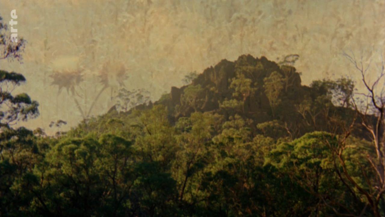 Capture d'écran 2020-04-12 à 11.45.49